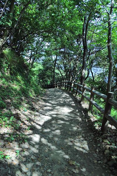 経が岬灯台までの登山道