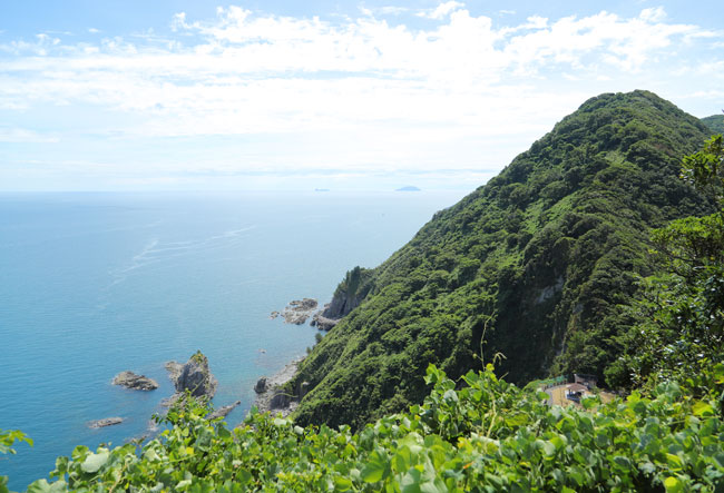 経が岬灯台までの登山道から見える景色